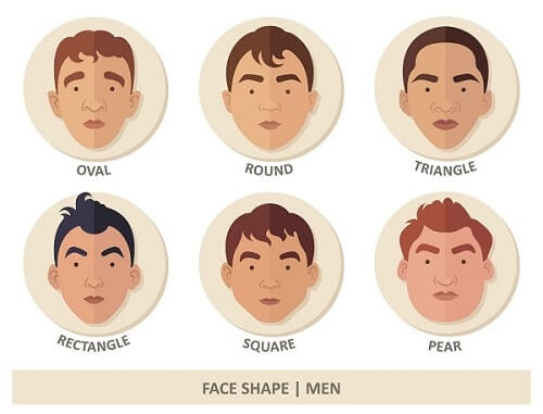 Die Formen des Gesichts